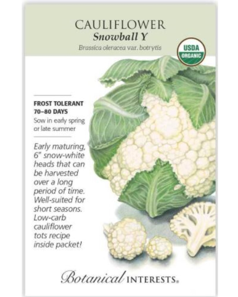 Snowball Y Cauliflower Organic Seed Pack