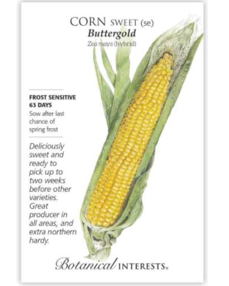 Buttergold Sweet Corn Seed Pack