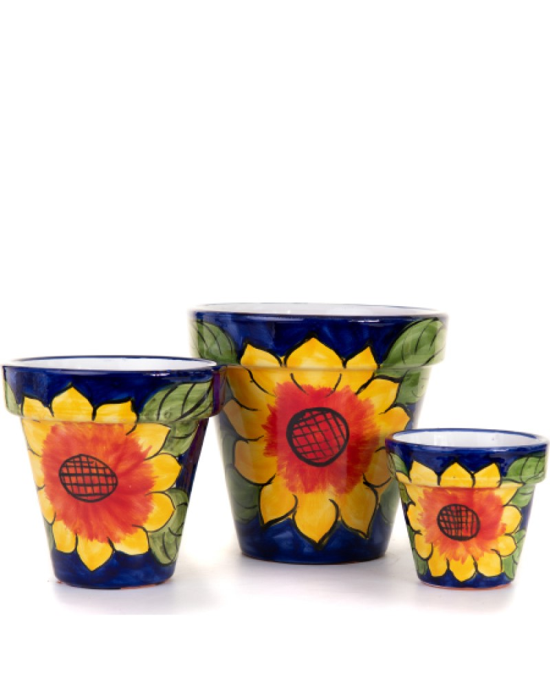 "Daffodil Standard Planter 12"""
