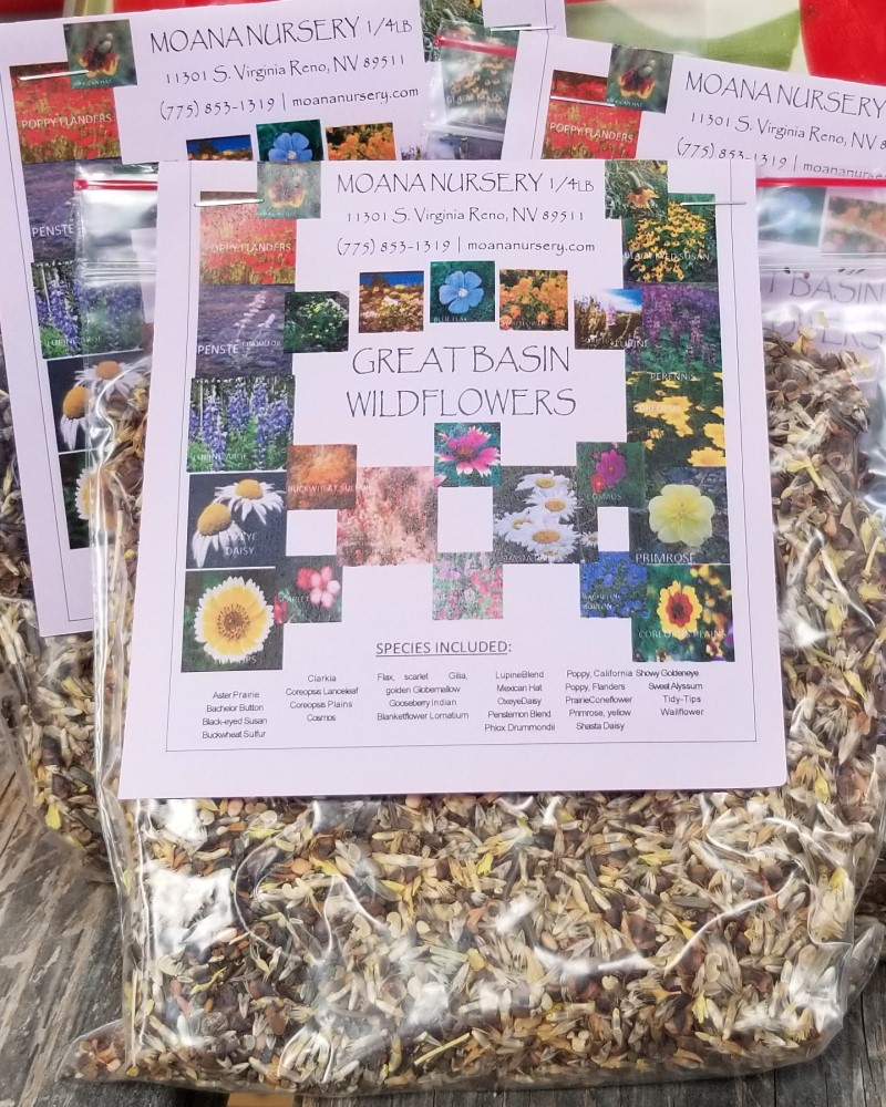 Great Basin Blend Comstock Seed 1/4lb Bag