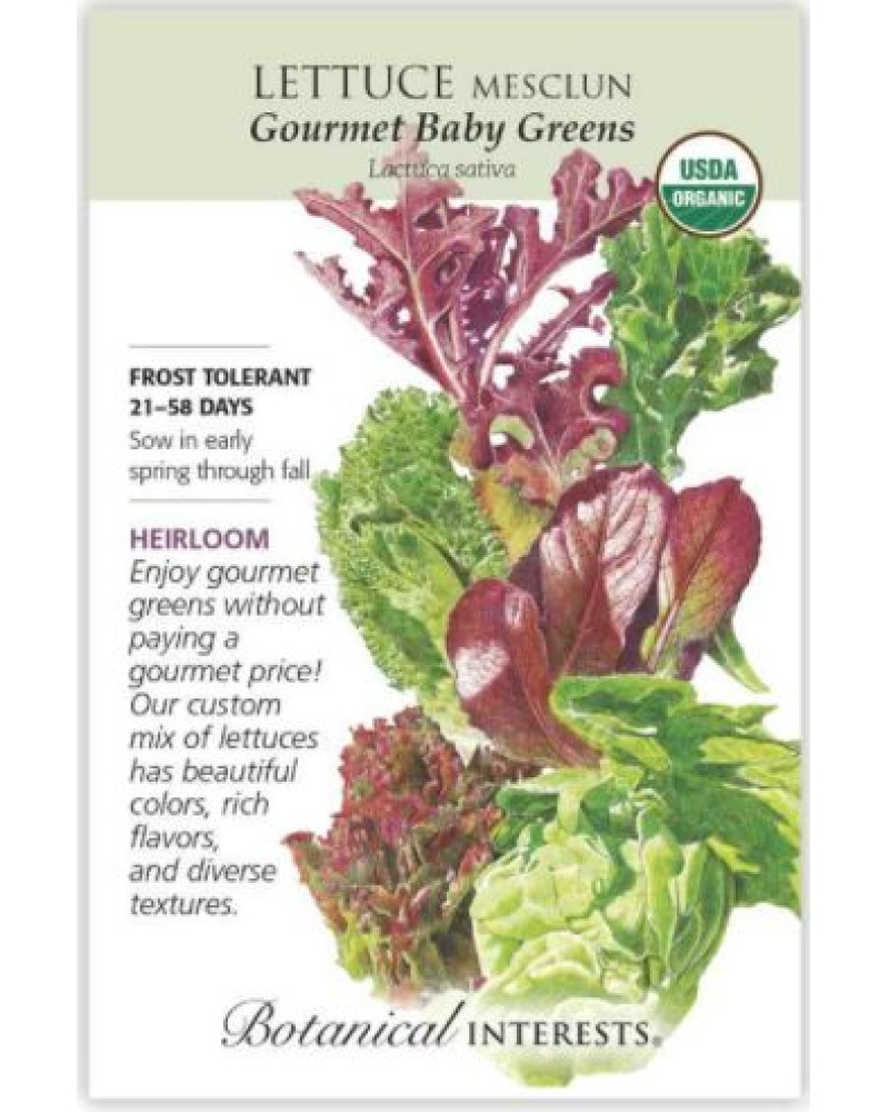 Gourmet Baby Greens Mesclun Lettuce Organic Seed Pack