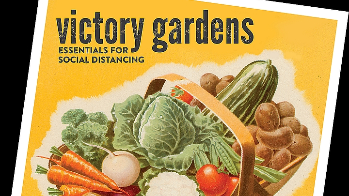 Gardening Packages